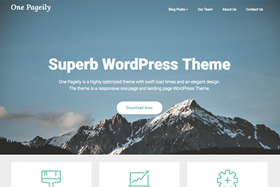 One Pageily Premium WordPress Theme