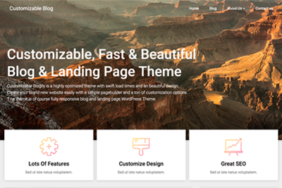 Customizable Blogily Premium WordPress Theme