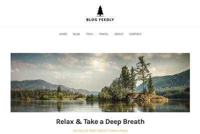 Blog Feedly Premium WordPress Theme