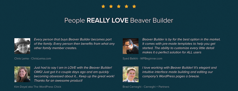 Advantages of Paying for Beaver Builder