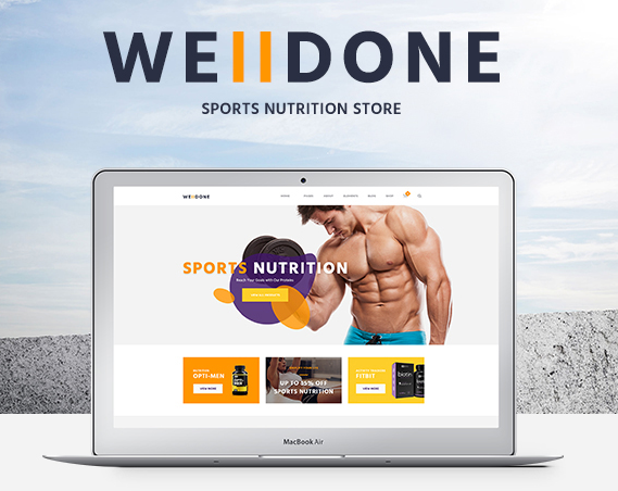 well done wordpress theme for eCommerce websites