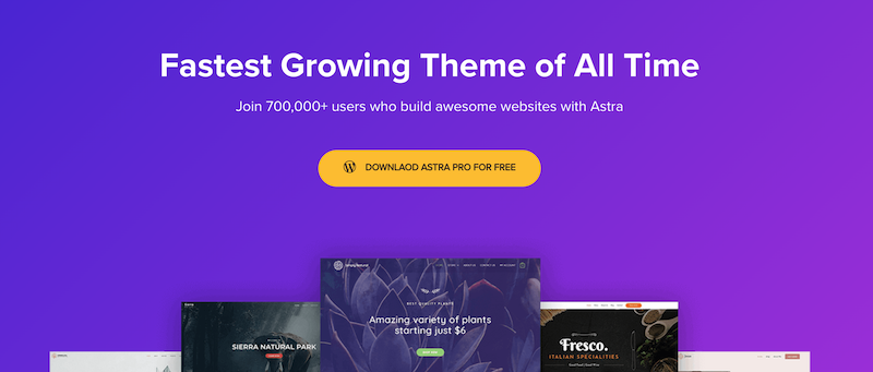 Astra is the second most used WordPress theme